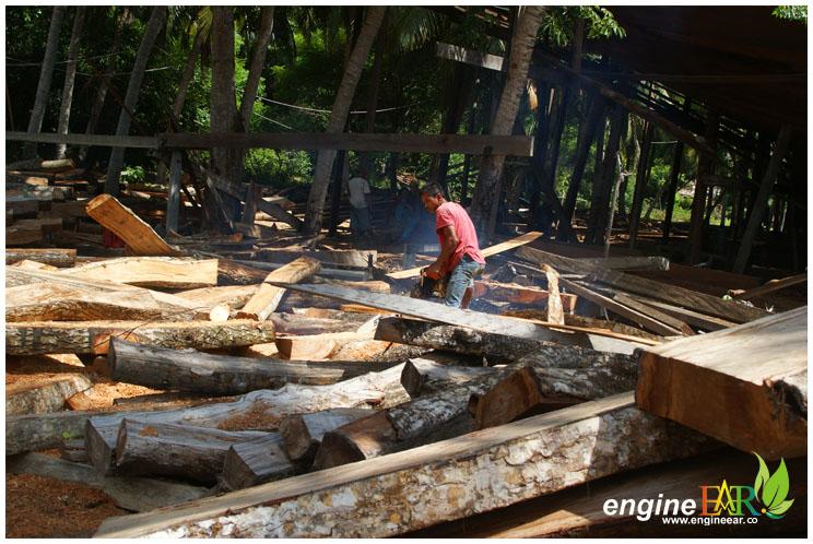 Potong kayu