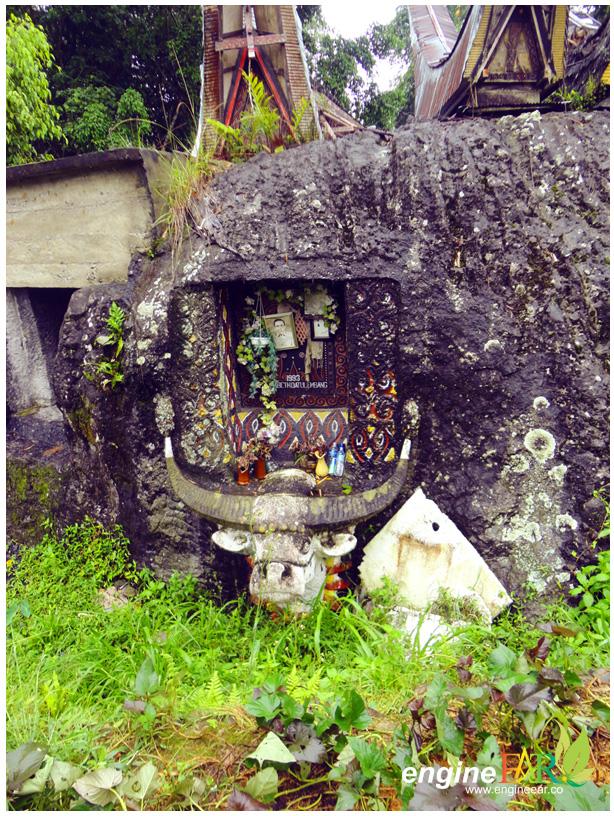 Kerbau, ikon Toraja